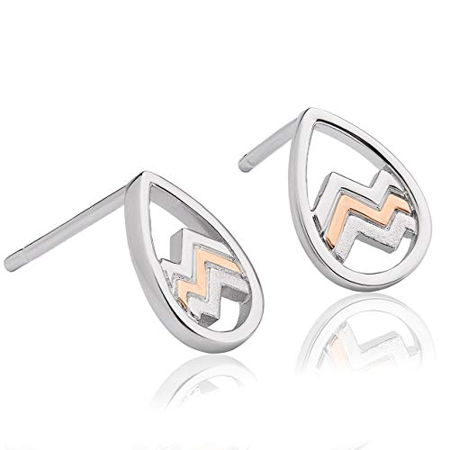 Clogau Stud Earrings 3SCNFE
