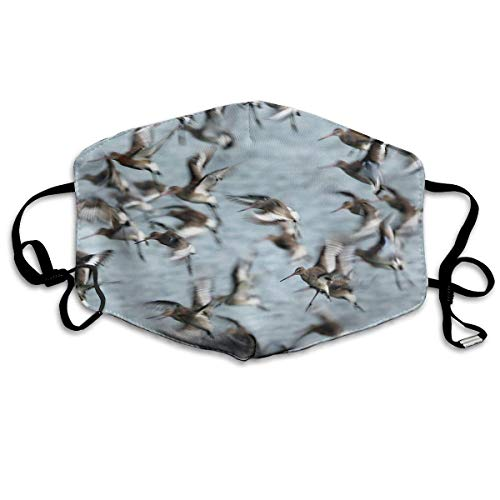 Preisvergleich Produktbild shifeiwanglu Unisex Mundmaske, Pollution Mask Flock Pigeon Bird Print Reusable Washable Earloop Face Mouth Mask for Men Women