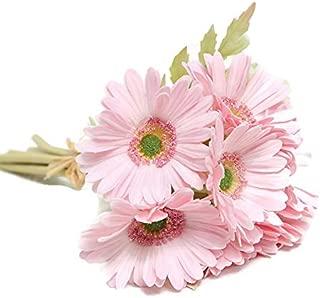 Floral Kingdom 24