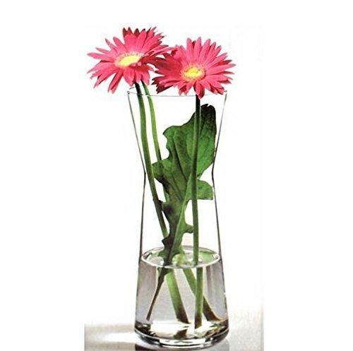 Pasabahce 43526 Flora Vase en verre avec taille élégante, haut intemporel, hauteur 26 cm