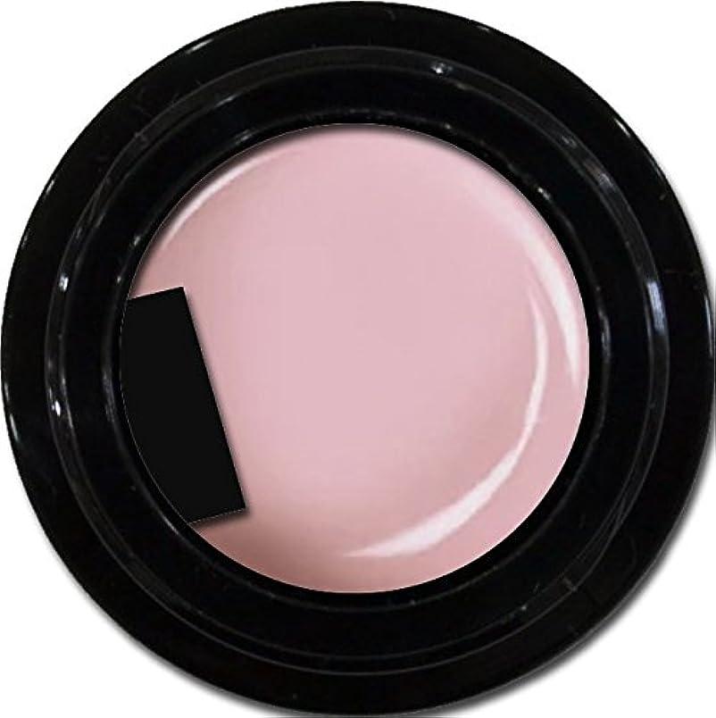 失クリーク実施するカラージェル enchant color gel M207 ShellPink 3g/ マットカラージェル M207 シェルピンク 3グラム