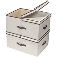 2-Pack Storage Maniac 65L Jumbo Closet 2 Compartment Storage Box with Removable Dividers