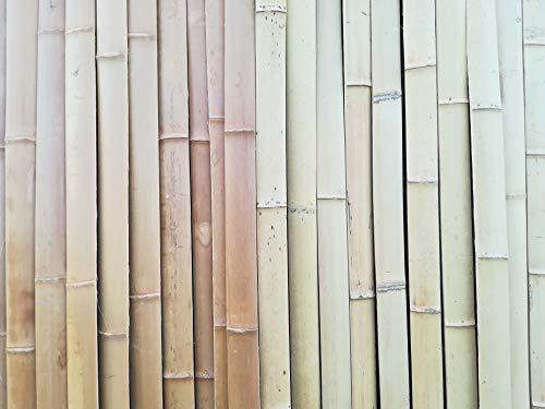 BIHL 10 x 4 cm Bambuslatten Natur Caramel 2 m Wandverkleidung Sichtschutz Bambusrohr (2 m, Natur)