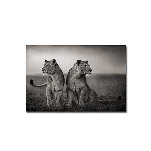 ZMFBHFBH Pinturas sobre Lienzo Cartel Africano de Dos Leones Wild Freedom Animal Impreso Arte Imagen de la Pared Hogar para Sala de Estar 60x80cm (23.6