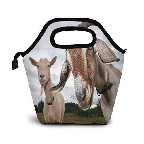 Ice Packs for Lunch Bags Two Goats Reusable Insulated Lunch Bag for Kids Women Men School Office Picnic or Travel