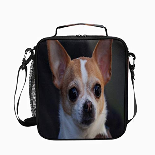 Chihuahua Dog Head Eyes Cute Premium Insulated Lunch Box Spacious Durable School Lunch Bag for Kids Boys Girls Reusable Leakproof Cooler Tote Bag with Removable Shoulder Strap for Adults Men Women