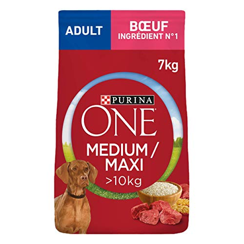 purina one chien carrefour