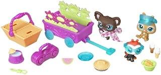 Hasbro Littlest Pet Shop Picnic