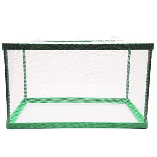 Aquarium Fish Breeder Box, Fish Isolation Box, Hatching Box, Juvenile Fish Spawning Incubator, Water Isolation Net Hatchery (Green)