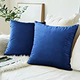 Gusgopo Throw Pillow Covers 20x20 Set of 2 Square Pillowcase Cozy Soft Velvet Cushion Case Home Decor for Sofa Couch Bed Chair, Blue