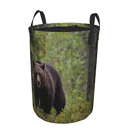 Cesta de lavandería plegable grande,Oso pardo animal en el bosque de Taiga,Cesto de almacenamiento de lavandería plegable redondo impermeable con cordón con asas,Bolsa de ropa sucia 14'x19'