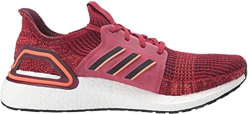 adidas Men's Ultraboost 19 Running Shoe, Active Maroon/Black/Maroon, 6 UK