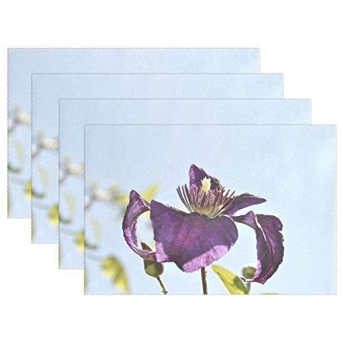 Promini Hitzebeständige Tischsets, Clematis Purple Blossom Bloom Purple Flower waschbar, Polyester Tischsets rutschfest waschbar Tischsets für Küche Esszimmer 4 Stück