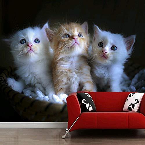 HUATULAI Muurschildering 3D Behang Katten Kittens Rieten Mand Manden voor Woonkamer Slaapkamer Slaapbank Achtergrond Decoratief Papel De Parede Infantil 430 * 300cm/B*h