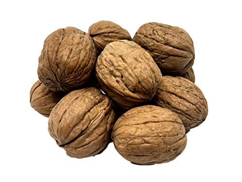 NUTS U.S. - Walnuts In Shell | Grown and Packed in California | Jumbo Size and Chandler Variety | Fresh Buttery Taste and Easy to Crack | Non-GMO and Raw Walnuts in Resealable Bags!!! (1 LB)