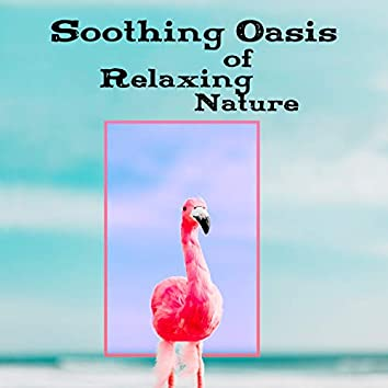 Soothing Oasis of Relaxing Nature