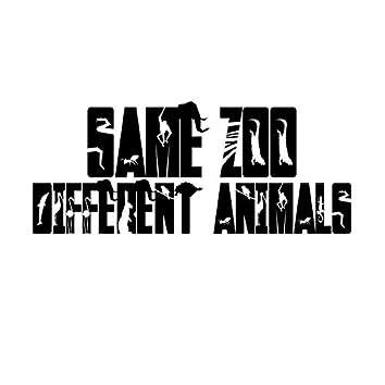 Same Zoo Different Animals