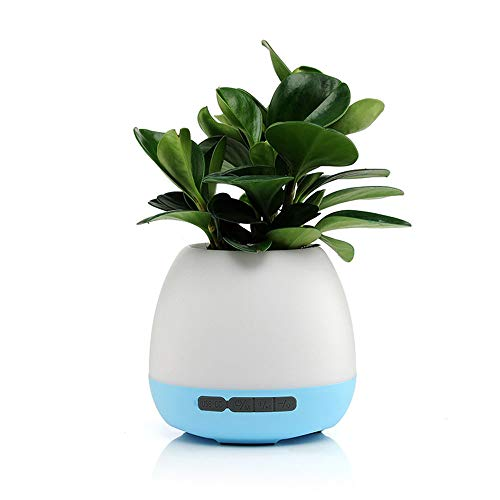 LXDER Bluetooth-luidspreker, draadloos, draagbaar, kleurrijk, nachtlicht, cadeau, Smart Touch inductie, muziek, bloempot, geluid