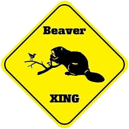 Lata decorativa de 20 x 30 cm, diseño de oso y cachorros con texto en inglés 'Bear And Cubs Crossing Xing', para decoración de hogar, cocina, baño, granja, jardín, garaje, citas inspiradoras
