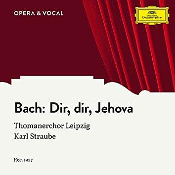 J.S. Bach: Dir, dir, Jehova will ich singen BWV 452