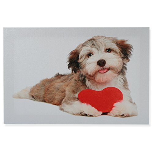 Canvas afbeelding hond en kat canvas afbeelding ca. 30x40 cm linnen op houten frame #1672 modern ca. 30x40 cm Hond met hart