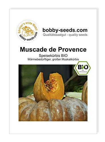 Bobby-Seeds Bio-Kürbissamen Muscade de Provence Portion