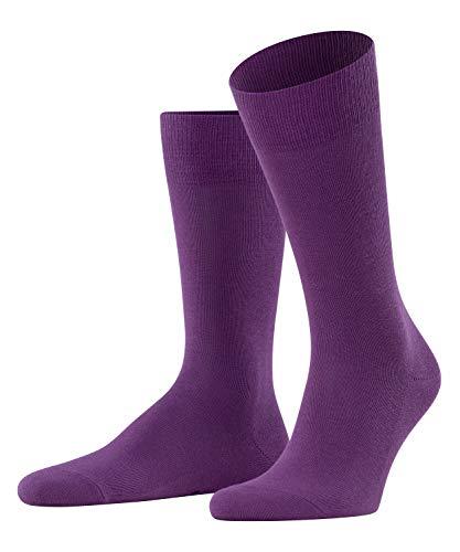 FALKE Herren Family M SO- 14645 Socken, lila (ultraviolett 8295), 39-42 (UK 5.5-8 Ι US 6.5-9)