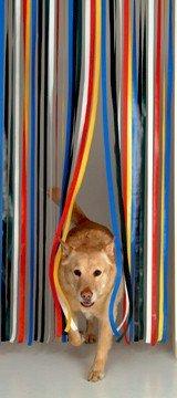 Holland Plastics Original Brand Roehrenblende als Tuervorhang, Fliegen – und Mueckenschutz, Tuerblende – Mehrfarbig - Komplett mit Schraubhaken für Holzrahmen