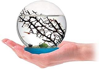 comprar comparacion AntHouse Ecosistema Acuatico - Gambario - Biosfera Marina (con gambas Incluidas)