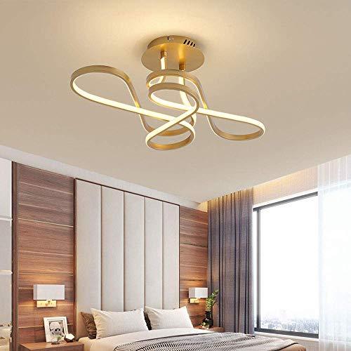 Living Equipment Lámpara de techo LED moderna Lámpara de techo moderna 6500K Araña de luces 3000K Lámpara negra Lámpara LED de 36W Dormitorio dorado Luz de la sala de estar Pasillo de techo Cocina