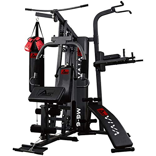 AsVIVA Kraftstation MG6 Pro, 50in1, 90kg Box-Kampfsport Multi-Gym, Dip-Station, Bauchtrainer, Boxsack (Boxhandschuhe)