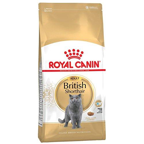 Royal Canin Katzenfutter, Britisch Kurzhaar, 10 kg, 2er-Pack.