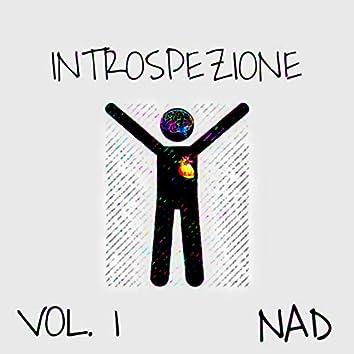 Introspezione, Vol. 1