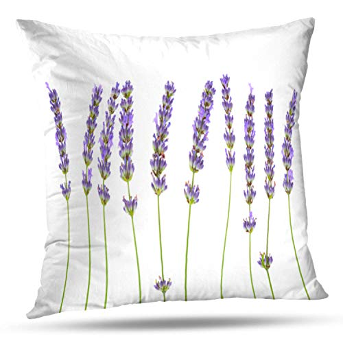 KJONG Lavender Flowers White Lavender Beautiful Beauty Bloom Blue Square Decorative Pillow Case 18 x 18 Inch Zippered Pillow Cover for Bedroom Living Room 2 Sides Print
