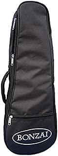 concert bag size