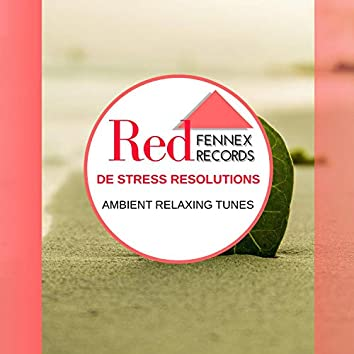 De Stress Resolutions - Ambient Relaxing Tunes