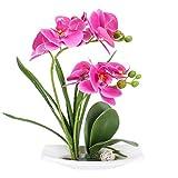 DWANCE Simulación Planta Artificial Orquídea Mariposa con Maceta Flores Artificiales impresas en 3D Violeta Planta Artificial Decorativa para Casa Oficina Boda 33 cm