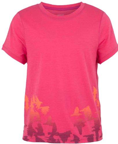 Icebreaker Kids t-Shirt à Manches Courtes Tech t Lite à Manches Courtes pour Homme Flock Rose Rose Vif 136-146 (9/10)