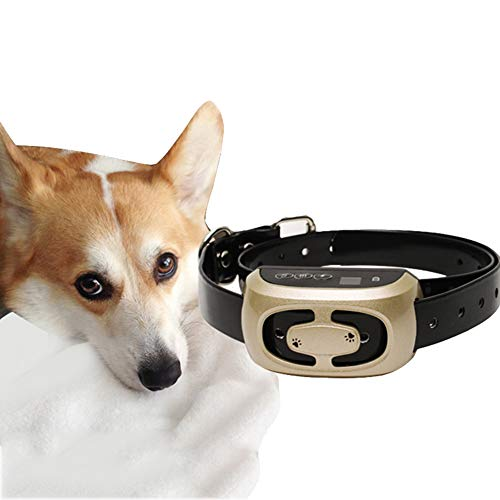 HSHXY Small Dog Bark Collar, Waterproof Rechargeable No Bark Collar Safely Stop Barking by Sound and Vibration, Best Choice for Dog Lovers
