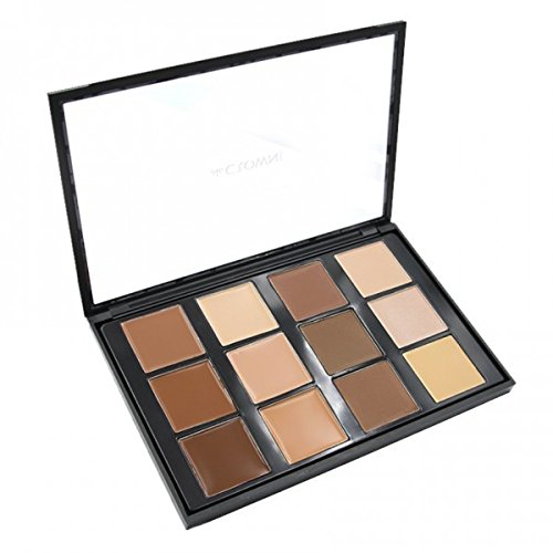 Crown Conceal and contour CP10 Makeup Palette