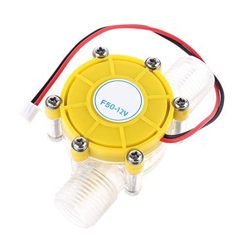 Abcidubxc Gleichstromgenerator,Mini Stromerzeuger 5V / 12V / 80V 10W,Hydrogenerator,Zur Energieumwandlung