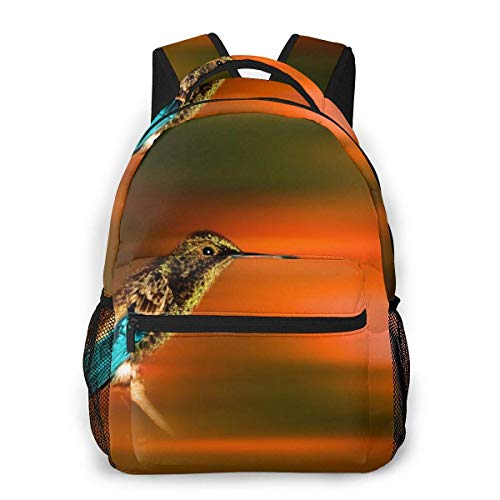 Lawenp Mode Unisex Rucksack Schöne Kolibri Bookbag Leichte Laptoptasche für Schulreisen Outdoor Camping