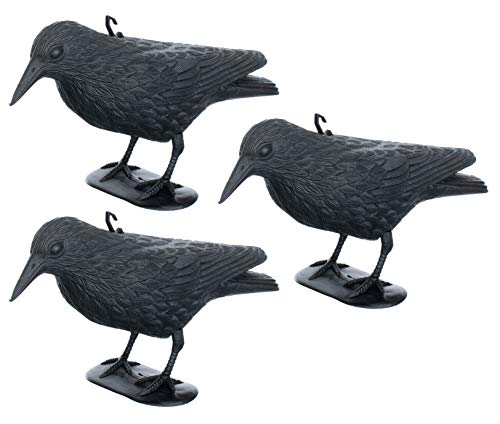 Brandsseller 3er-Set Taubenschreck Rabe Krähe abwehr von Kleinvögeln und Tauben Vogelschreck Tierfreundliche Abschreckung ca. 36 cm