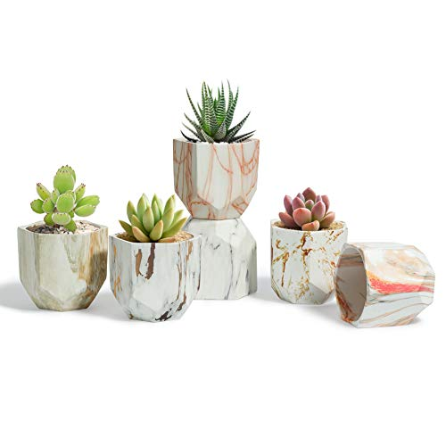 T4U Succulent Pot Ceramic 3 Inch Hexagon Marbling Colorful Collection Set of 6, Geometric Small Flower Plant Planter with Drainage Hole Cactus Bonsai Herb Container for Indoor Home Office Decor
