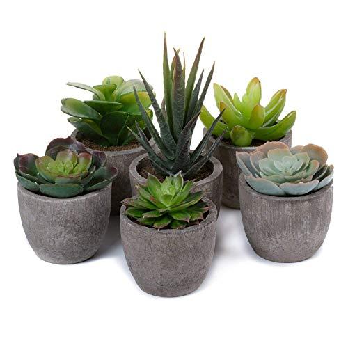 T4U Kunstmatige planten, kunstgras, bonsai, kunstbloem, decoratie, kunststof, stokjes, bloemarrangementen voor thuis en op kantoor, decoratie voor desktop, bonsai