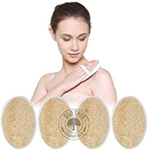 Old Tree Body Scrubber pack Of 4 Piece