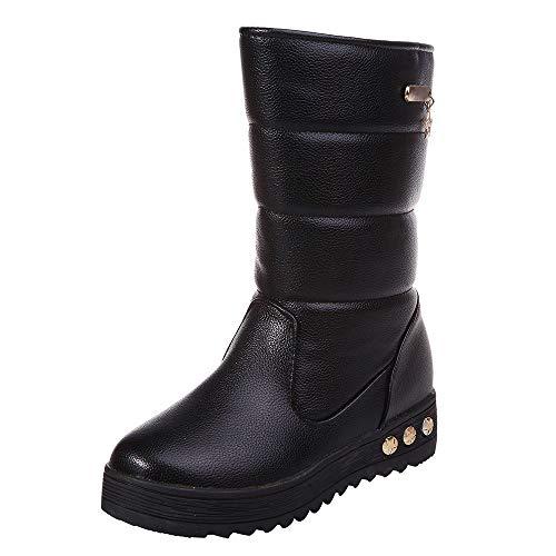 Calentadores Zapatos Marca PAOLIAN_Zapatos Mujer