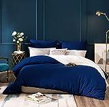AYSW 14 Couleurs Parure de lit avec Housse de Couette 220 x 240 cm / 65 x 65 x 2 cm Parure 3 pieces pour 2 Personnes avec Fermeture eclair,Bleu