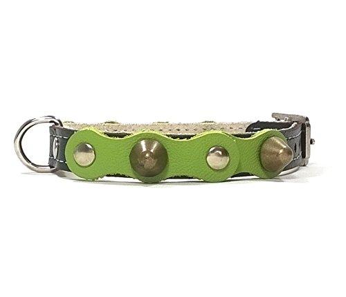 Superpipapo Hunde-Halsband, Schwarz Grün Leder Handmade Design mit Nieten, Robuste Ausgefallene Qualität für Welpen, Chihuahuas und Kleine Hunde, 30 cm XXS: Halsumfang 20-25 cm, Breit 13mm