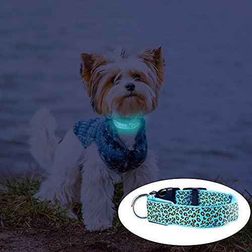 Collar de Perro LED, USB Recargable, 6 Colores, Leopardo Luminoso Intermitente Cachorro Seguridad Nocturna Collar Luminoso Ajustable Perros pequeños, medianos y Grandes (Azul)